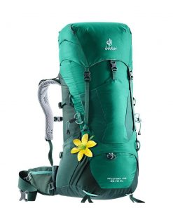 Deuter Aircontact Lite 35+10 SL Backpack alpinegreen / forest backpack